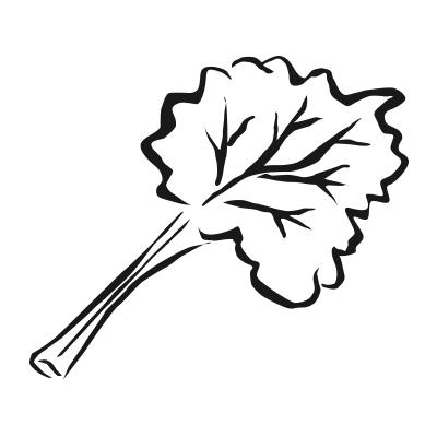 logo Skagafjordur